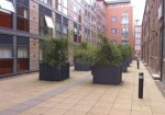East Street Mills Leeds